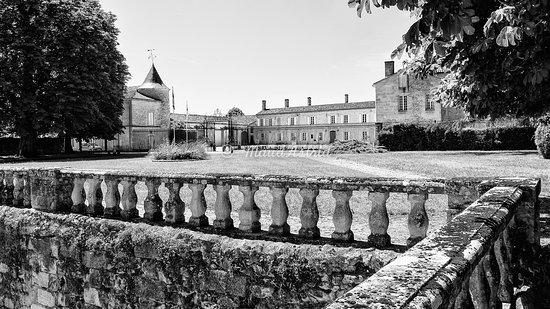 Portets, Frankrike: Vue depuis la terrasse, avec la Garonne au dos. Voir le blog de Maud Astrid photographe