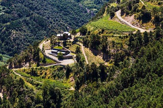 Sant Julia de Loria, Andorra: Microproductores de vino en Sant Julià de Lòria / Micro-producteurs de vin