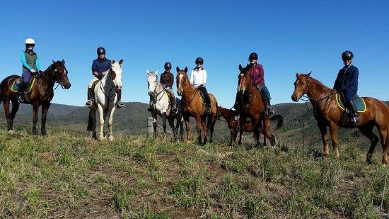 Noosa, Australia: Top of the Blacksnake Range