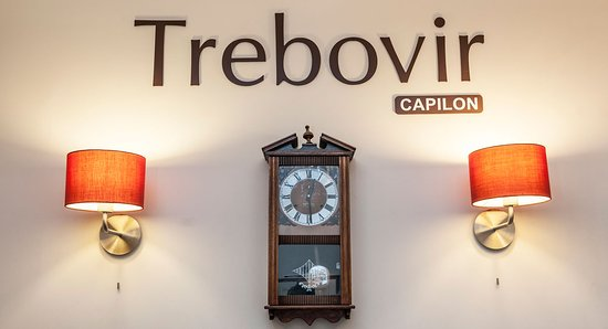 Trebovir Hotel: Reception