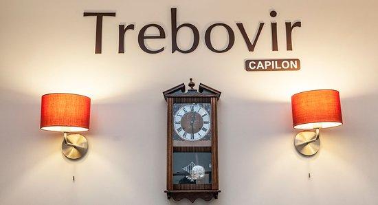 Trebovir Hotel: Reception