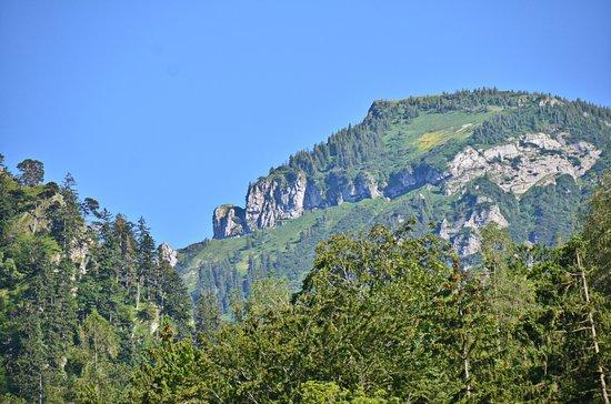 Gasthof Mühlwinkl: Blick in die Berge