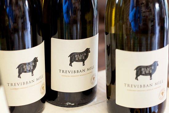 Polzeath, UK: Award winning local wine