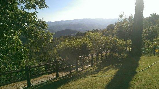Chiusi della Verna, Италия: Ausflug Arezzo,Block vom Monte Penny.