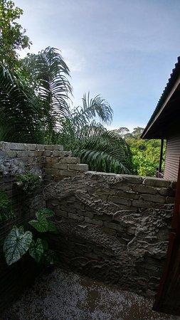 Sepilok, ماليزيا: Shower