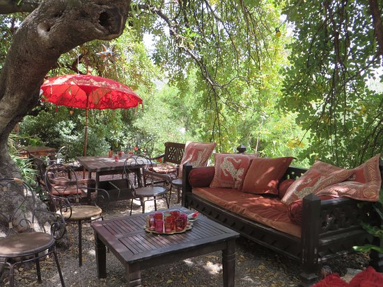 Hotel Finca el Cerrillo: under the carob tree