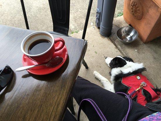 Marcoola, Australien: Great dog friendly cafes nearby