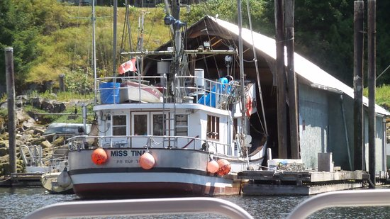 Madeira Park, Canada: Boat in the harbour