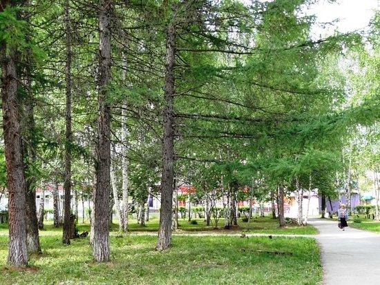 Park at Mira Street