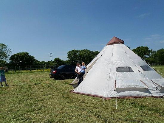 Sway, UK: Nordic Farm Camping & Caravaning
