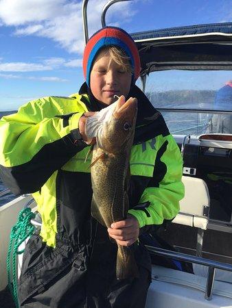 Sommaroy, Norway: Fin torsk på 3 kg