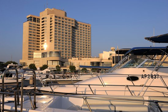 InterContinental Abu Dhabi: Hotel Exterior