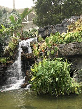 Opryland Hotel Gardens: photo6.jpg
