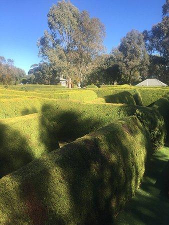 Mintaro, أستراليا: photo7.jpg