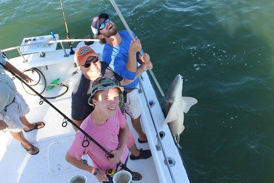 Fernandina Beach, FL: Nurse Shark