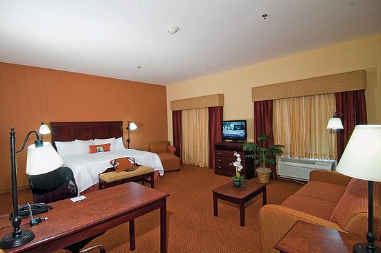 Hampton Inn & Suites Austin South/Buda : Suite