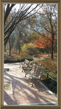 Daegu, Sydkorea: 대구 수목원