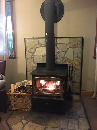 Crystal Mountain, WA: wood burning fireplace