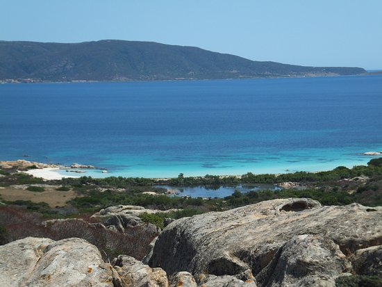 cala sant' andrea, the pearl of asinara