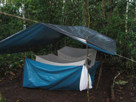 Amazon Explorer Waterproofing and mosquito proofing the tents. & Waterproofing and mosquito proofing the tents. - Picture of Amazon ...