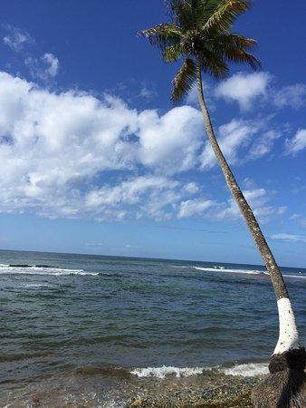 Patillas, Porto Rico : photo2.jpg