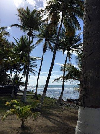 Patillas, Porto Rico : photo3.jpg