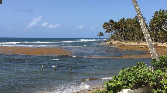 Patillas, Porto Rico: photo5.jpg