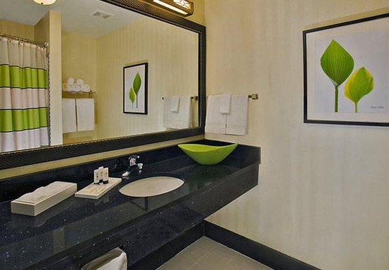 นิวบัฟฟาโล, มิชิแกน: Guest Bathroom