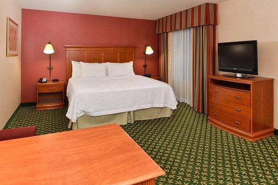 Hampton Inn & Suites Casper : King Suite