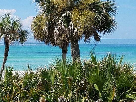 Sunrise Beach Resort: 20160719_104855_large.jpg