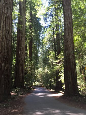 Guerneville, Californie : photo9.jpg