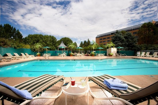 Englewood, CO: Inverness_Pool_Outdoor