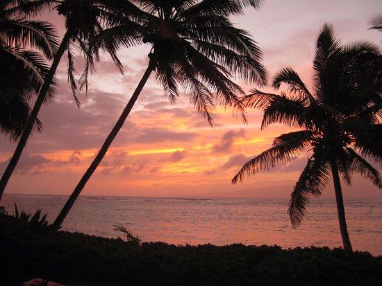 Waialua Beach: sunset