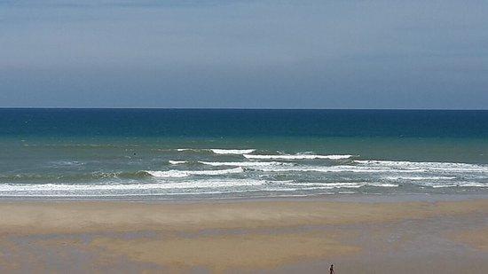 Feral Surf Tours: photo2.jpg