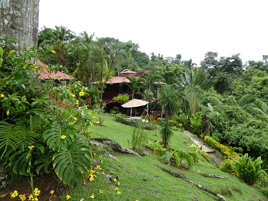 Hotel Las Caletas Lodge: View from property looking back at the Duplex building and surrounding area.
