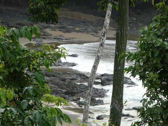 لاس كاليتاس لودج: There is no pool at Las Caletas, but there is a gorgeous beach a short walk from the rooms!