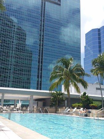 Conrad Miami: La piscine attenante à l'hôtel