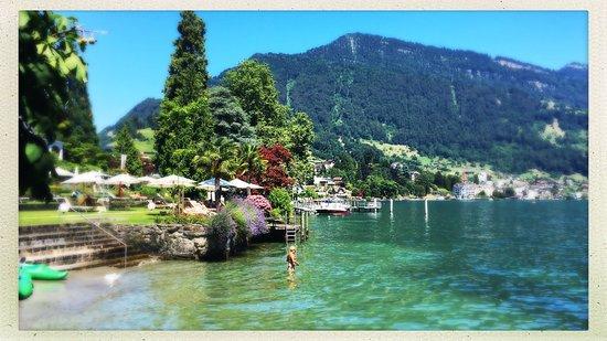 Weggis, İsviçre: photo4.jpg