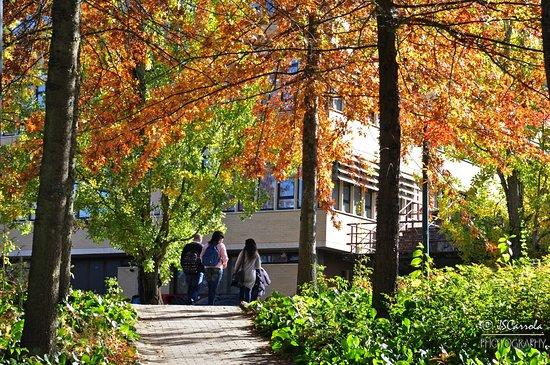 UTAD Botanical Garden