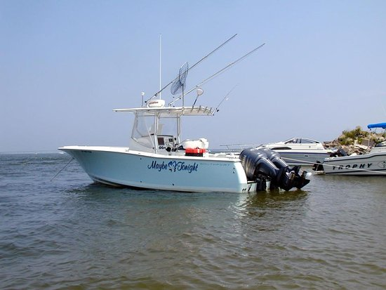 Bay Shore, NY: Maybe Tonight Fishing Charters