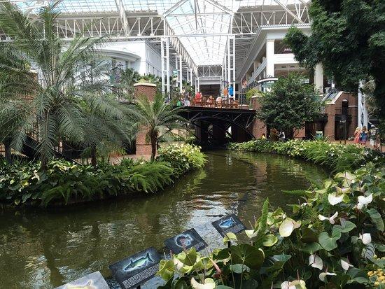 Opryland Hotel Gardens: Canal in gardens