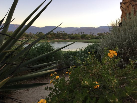 Embarc Palm Desert: photo3.jpg