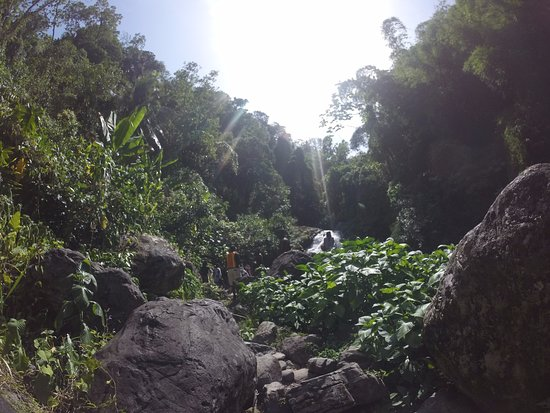 Blue Mountain Bicycle Tour : Waterfall at the end