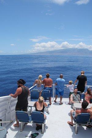 Maalaea, Hawái: Snorkel ride back