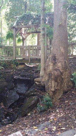 Hatcher Garden & Woodland Preserve: 20160721_121730_large.jpg