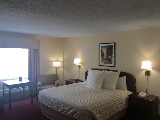 The University Inn: King Room
