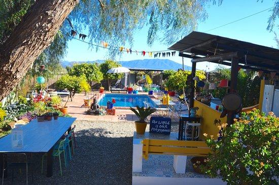 Bed and Breakfast finca Alegria de la Vida: De buitenkeuken en het zwembad