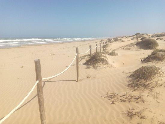 Dunas De La Mata Playa De La Mata Picture Of La Mata Beach Torrevieja Tripadvisor