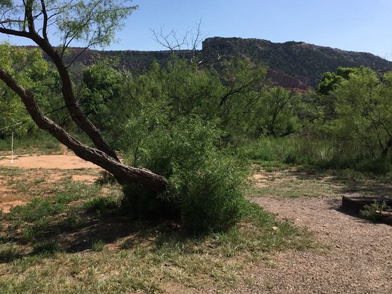 Canyon, TX: Cactus camp area
