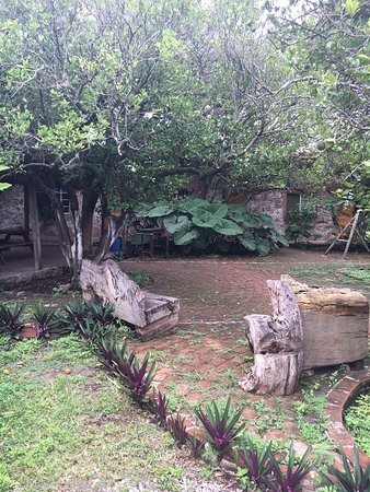 Ciudad Fernández, México: photo3.jpg